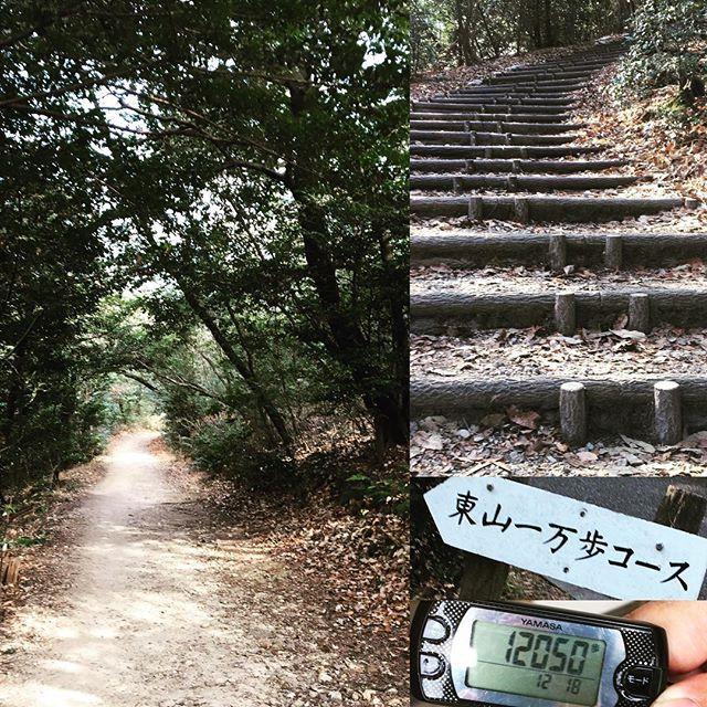 【misao1959】さんのInstagramをピンしています。 《今日は朝からお天気がよく久しぶりにウォーキング👟 近場で東山一万歩コース  森の中、木漏れ日が気持ちいい😊 程よくアップダウンがあり私にはちょうど良い😊適度な疲労感…f^_^; 8.5キロ  12000歩  #東山一万歩コース#ウォーキング #適度な運動#気分爽快 #疲労感 #ちょうどいい #東山動物園 #東山植物園 #名古屋 #千種区 #体力 #森#木漏れ日》