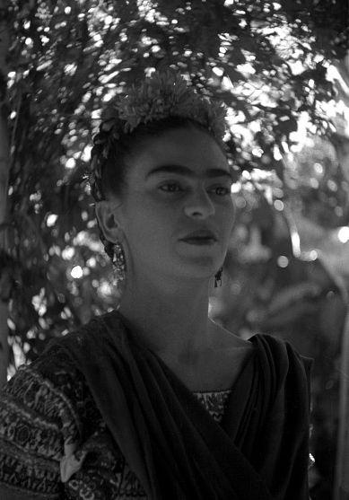 Frida Frida Frida x