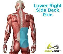 "There are many causes for pain in the lower back right side, including some that are unique to men or women.#Study: ""#Back #Pain #Resolution"" #Chronic #Right #Shoulder #Painful #Acupuncture #Healing #Healthcare #Good #Ballet #Scorpion #Right #Back #Pain #Doesnt #relieve #upper #right #shoulder #blade #back #pain #MiddleBackPain"