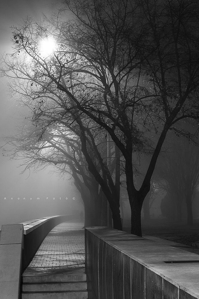 *Night at the Moment - Szeged, Hungary (by Tóth István)