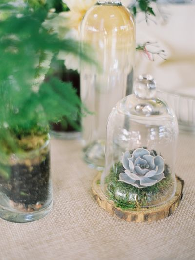 You'd expect to see them in the southwestern states but succulents are a fun centerpiece twist, especially when they're paired with a unique containers like this bell jar. (They're also an easy way to dress up bridal shower and rehearsal dinner tables!)