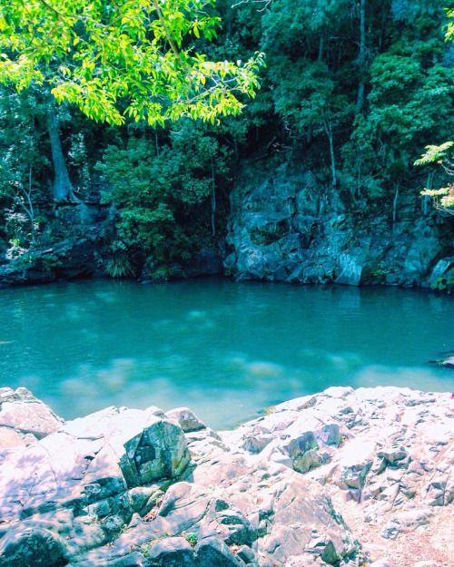 Quick dips (at Currumbin Rock Pools) 29 notas