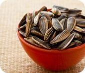 Leche semillas de girasol: rica en vitamina E, minerales (calcio, potasio, magnesio o fósforo). Aporta proteínas y grasas saludables.favorece un óptimo funcionamiento cerebral.