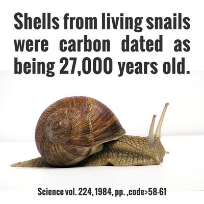 Flaws of carbon dating