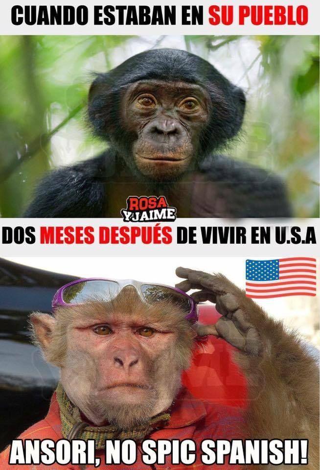 Meme Tipico Latino Venezolano Argentino Funny Baby Jokes Funny Relatable Memes Funny Spanish Memes