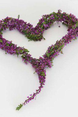 Lag et vakkert hjerte av lyng.