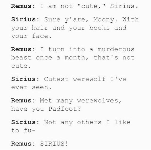 sirius and remus relationship memes