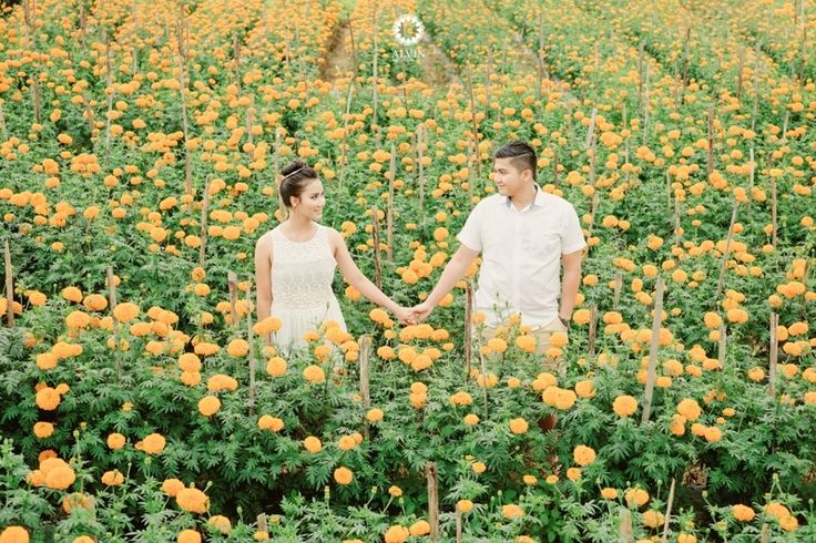 Yellow Flowers Engagement Session | pre-Wedding Project by ALVIN PHOTOGRAPHY http://www.bridestory.com/alvin-photography/projects/restu-dito-pre-wedding