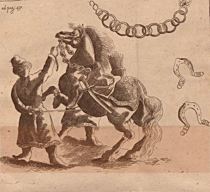 http://dariocaballeros.blogspot.cz/2011/08/muscovy-russian-winged-horsemen-crica.html