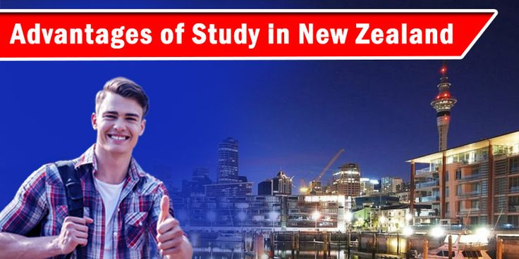 Study In New Zealand: If you are planning about Study In New Zealand and wondering whether New Zealand is the right destination for you to study or not, then you are on a right place. This blog is specially designed for the candidates like you. Now, the New Zealand is becoming the first choice of