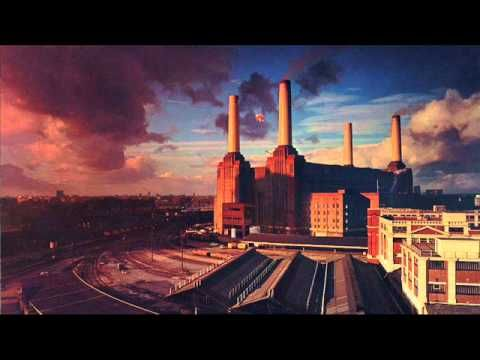 Pink Floyd - Dogs [Full Song] - IG: ancapal89