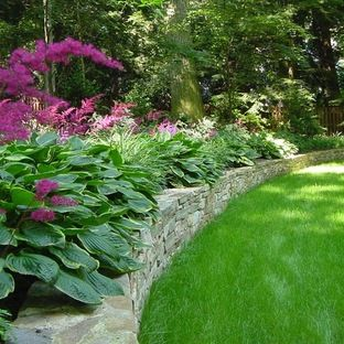 Perennial Plants Zone 8 Design Ideas, Pictures, Remodel ...