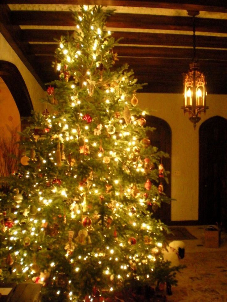 177 best Christmas Trees images on Pinterest | Christmas time ...