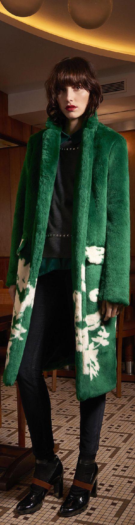#Farbbberatung #Stilberatung #Farbenreich mit www.farben-reich.com Fall 2015 Ready-to-Wear Sonia by Sonia Rykiel