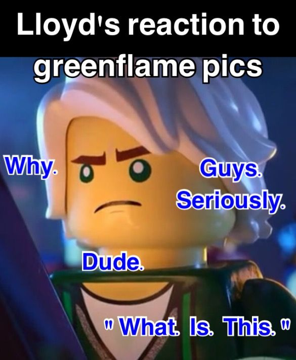 I Completely Agree Lloyd Ninjago Memes Lego Ninjago Lego Memes