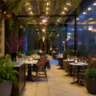 Dalloway Terrace at the bloomsbury club bar. 50% off food, Live jazz after 7pm
