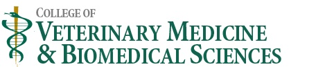 Colorado State University College of Veterinary Medicine and Biomedical Sciences ~j