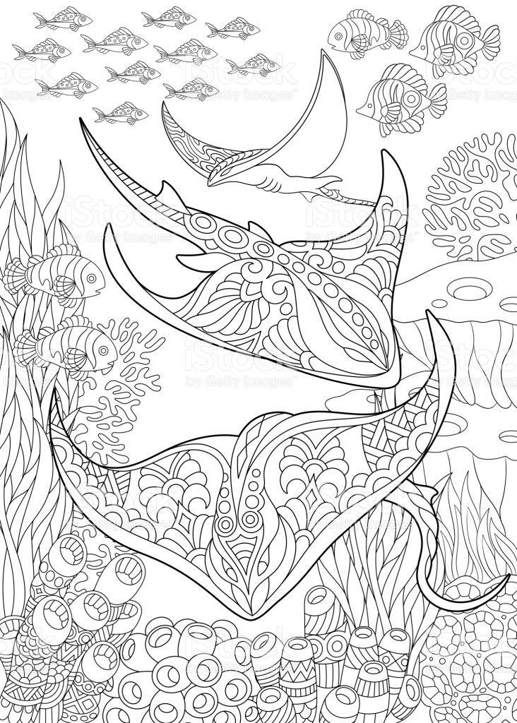 Underwater Background With Stingray Shoal Tropical Fishes And Ocean Malbuch Vorlagen Wenn Du Mal Buch Bilder Zum Ausmalen