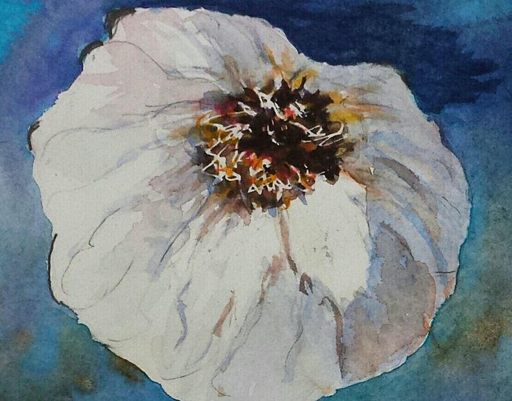 Watercolor of garlic. 140lb Arches paper.