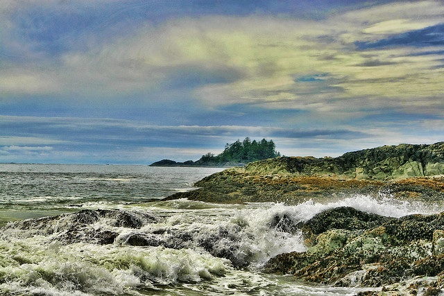 Tofino beach Vancouver Island
