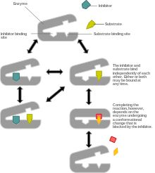 Non-competitive inhibition - Wikipedia