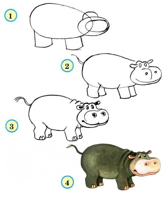 57 best images about drawing for kids on pinterest - Animal drawwing kids ...