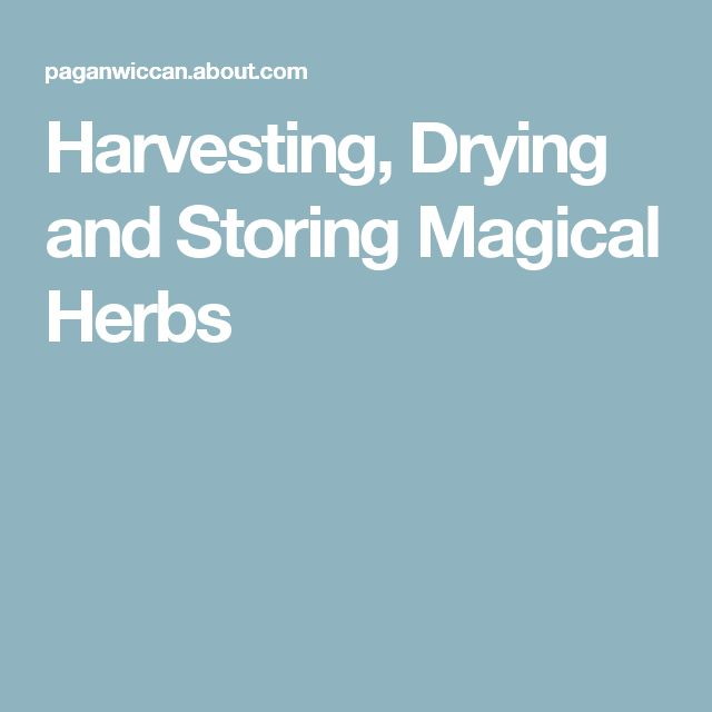 Harvesting, Drying and Storing Magical Herbs