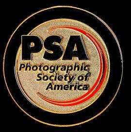 "2014  PSA Gold Medal  ""PhotoART Vision International Salon"" - Czech Republic for Color ""Vendulka"""