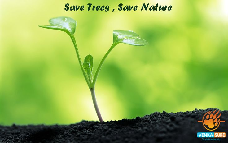 Plant a tree, Plant a new life.  Take care of trees, They take care of you. Happy Van Mohatsav...!