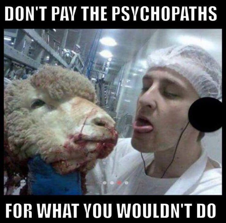 Don't pay psychopaths for what you wouldn't do. Clear your conscience. Go vegan #vegan