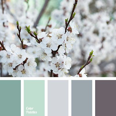 color combination for early spring, colors of spring 2017, dark grey, emerald, graphite, gray, gray with shade of purple, gray-brown, pale emerald color, shades of emerald, shades of gray, shades of green.