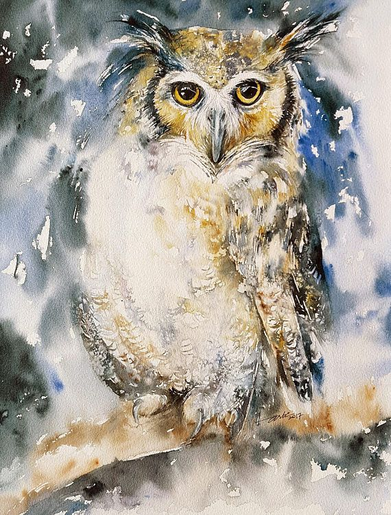 Owl Original Watercolor Painting Wall Art animal and Birds Owl