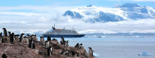 Everything We Know About Last Minute Cruises to Antarctica  Written by Jessica on February 10, 2013