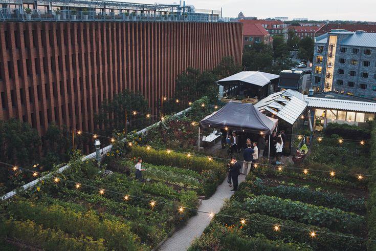 Stedsans Rooftop Farm Restaurant · Copenhagen | iGNANT.de