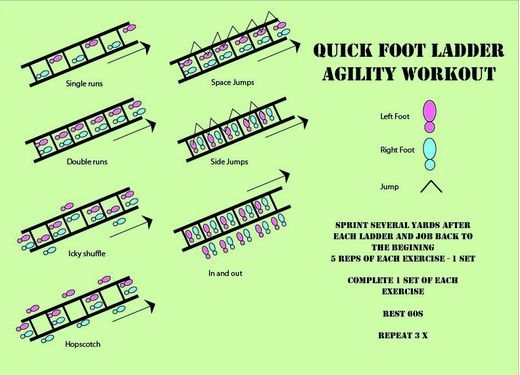 Quick Foot Ladder Agility Workout