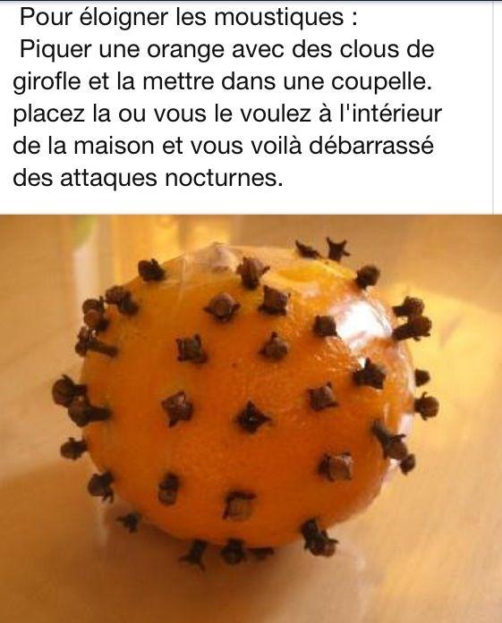 Anti moustique naturel