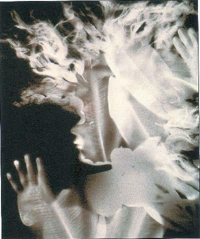 Martha Madigan's Goddess #1, 1997. Solar photogram on gold-toned POP paper.