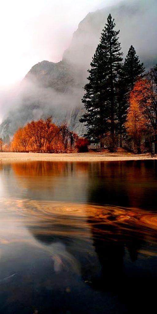 Autumn in ~Yosemite National Park, California