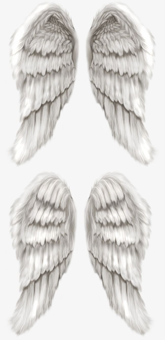 Wing Animation Angel Png Transpa