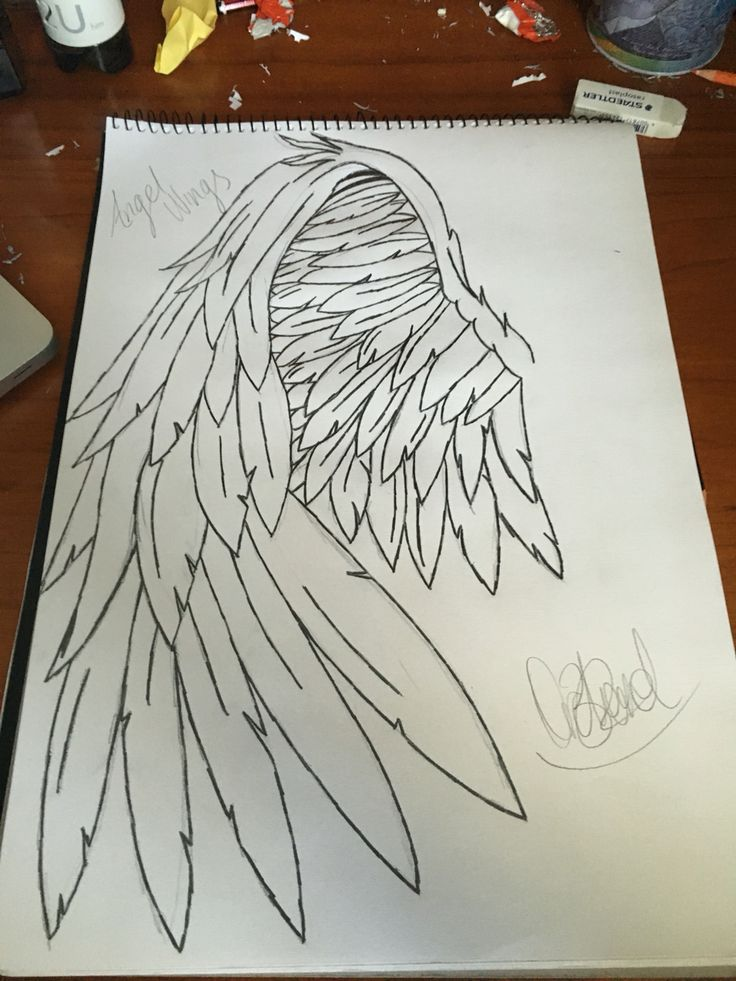 Quick sketch #Angel Wings# Tattoos# Not my design Just drawn