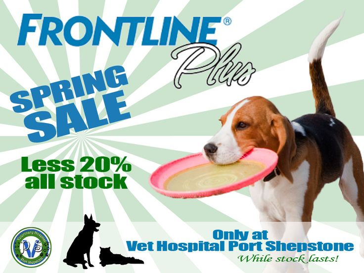 Frontline Plus 2015 Spring Sale - Less 20% Frontline Plus Dogs & Cats. Less 20% – While stock lasts. Also See  Our Dog & Cat Sterilisation Services Vaccination Tuesdays   http://www.vet-portshepstone.co.za/frontline-plus-2015-spring-sale-less-20/