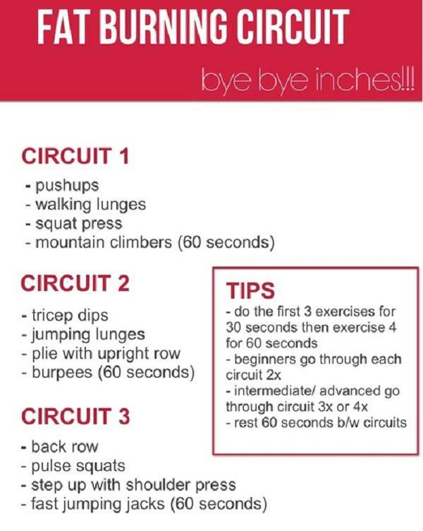 Circuit Training News Lose Weight Circuit Training