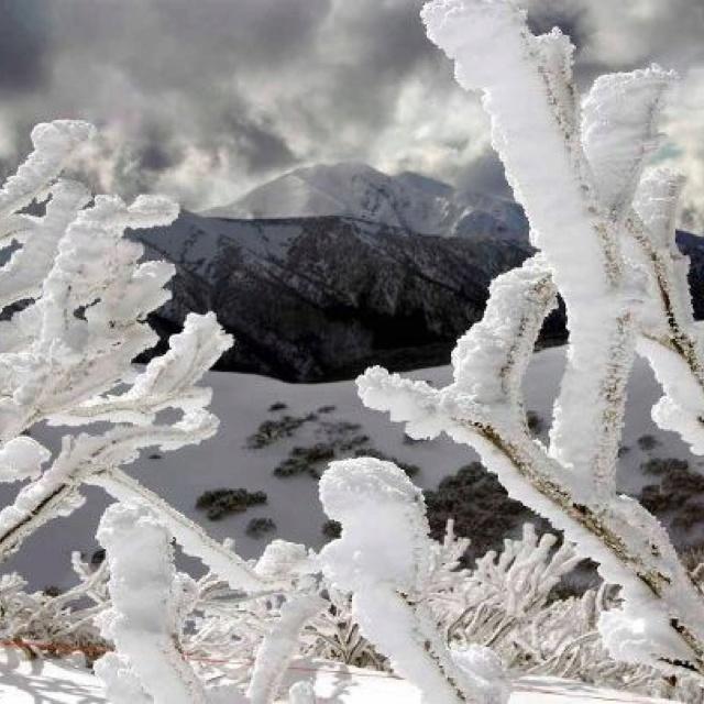 Mt Feathertop from Mt Hotham, Victoria, Australia