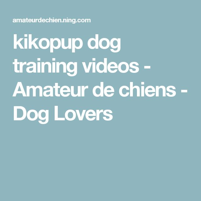 kikopup dog training videos - Amateur de chiens - Dog Lovers