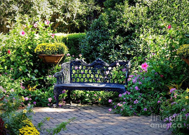 cozy southern garden bench