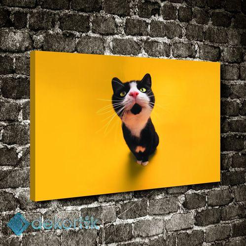 Siyah Kedi Sarı Zemin Tablo #çocuk_odası_tabloları #genç_odası_tabloları