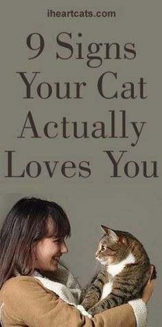 9 Signs Your Cat Loves You
