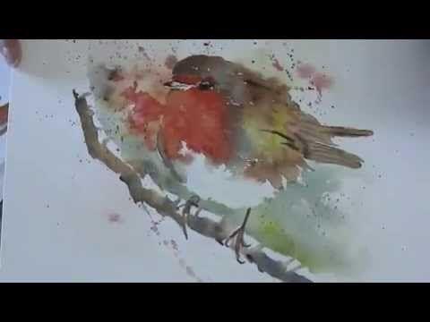 Aquarelle :Le rouge gorge - YouTube