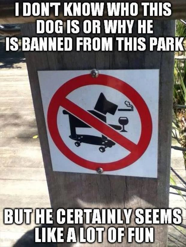 The most interesting dog in the world! I don't always smoke and drink, but when I do, I'm riding a skateboard!