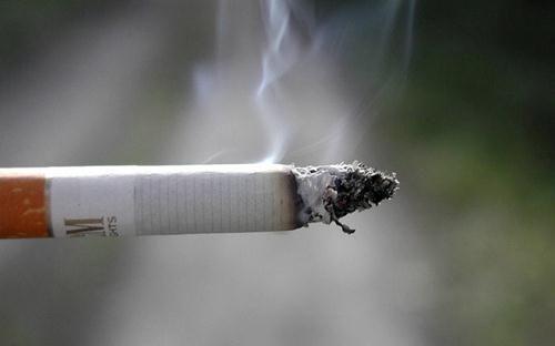 Masih Merokok? Inilah Bahaya Rokok Bagi Kesehatan Anda dan Orang Sekitar. Simak selengkapnya http://www.masbroo.com/bahaya-rokok-bagi-kesehatan.html